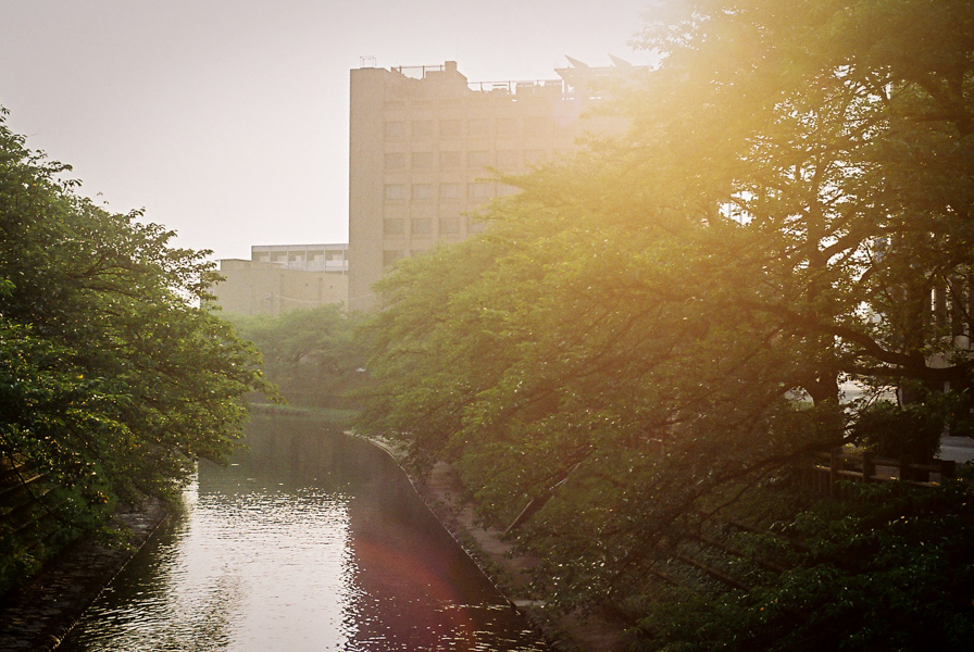 Morning Canal